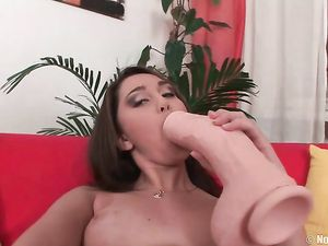Stripping Teen Gets Out The Big Toy For Dildo Fucking